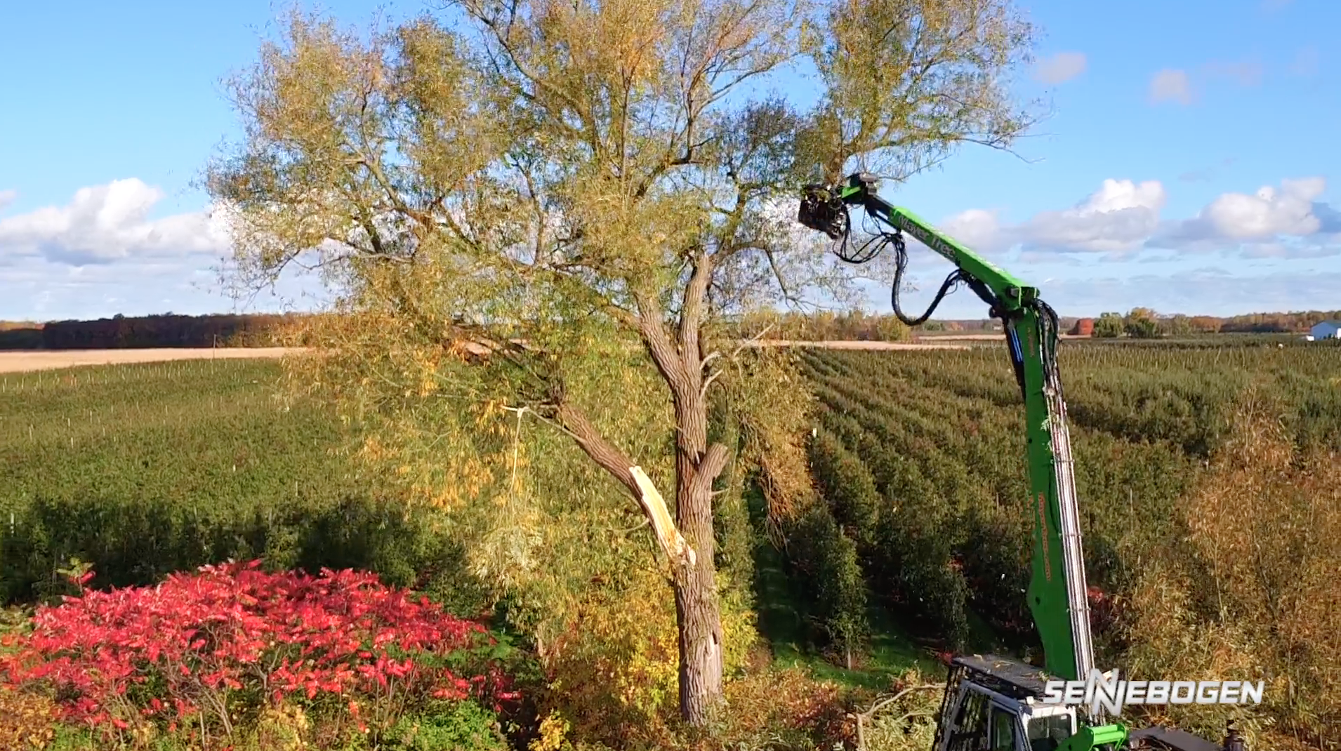 718e tree handler